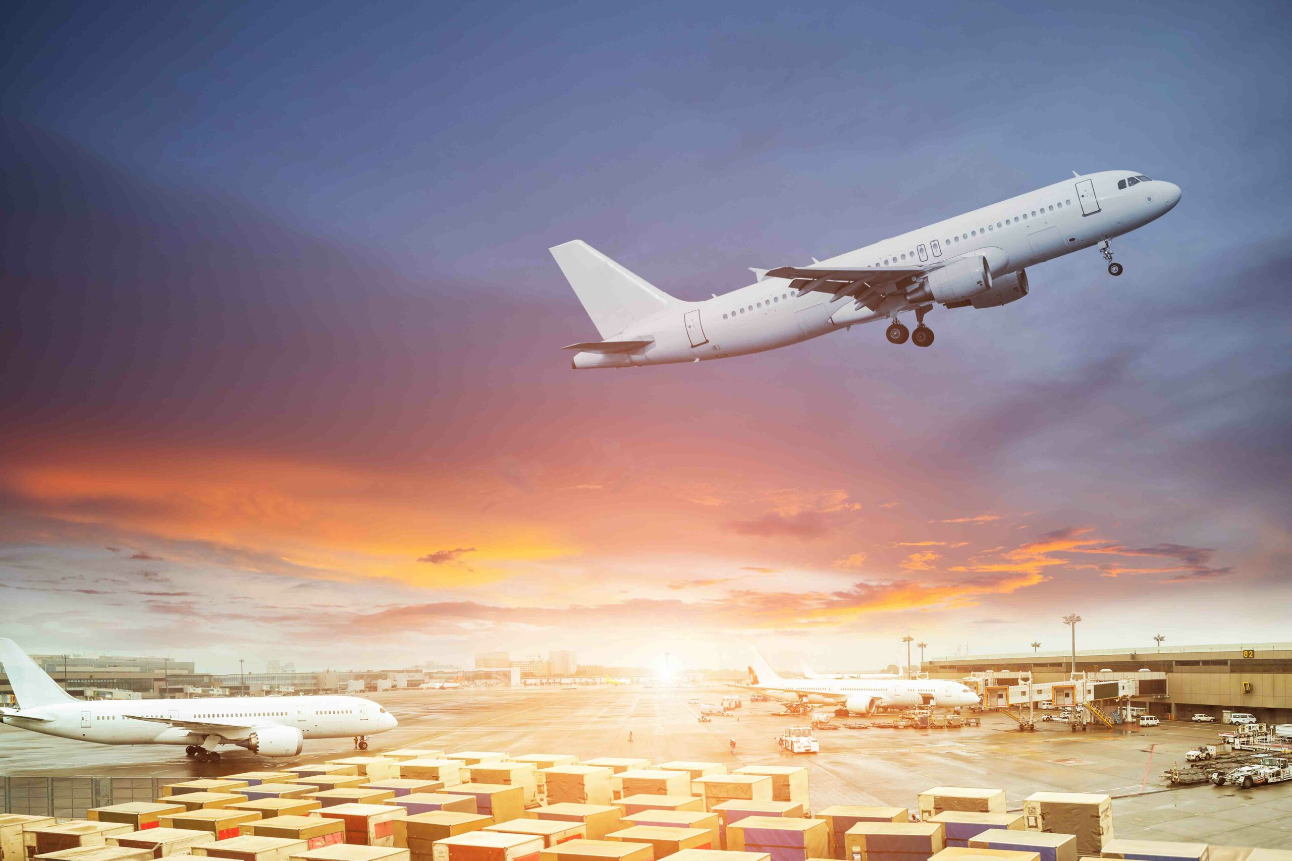 Another bottleneck in the logistics supply chain : Air cargo handling Apollo Cargo Alliance